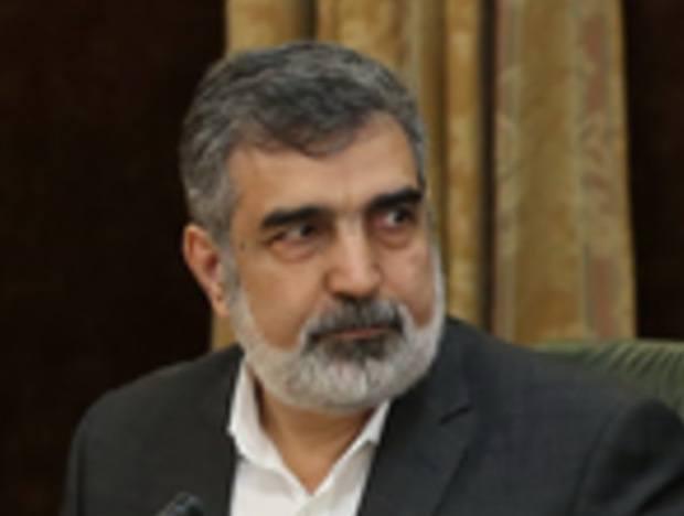 Der Sprecher der iranischen Atomorganisation (AEOI), Behrouz Kamalvandi, auf einem Archivbild.