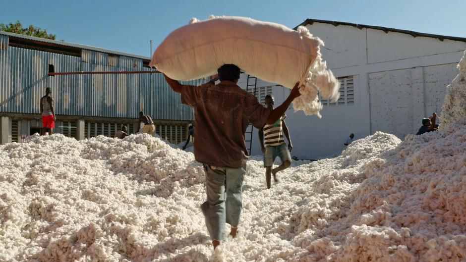 """Bio-Baumwolle dank interkultureller Synergien: Nino Jacusso porträtiert in """"Fair Traders"""" Geschäftsmodelle für die Post-Wachstumsökonomie."""