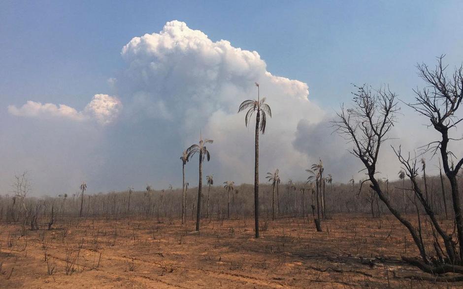 Die Region Santa Cruz trafen die Brände besonders hart.