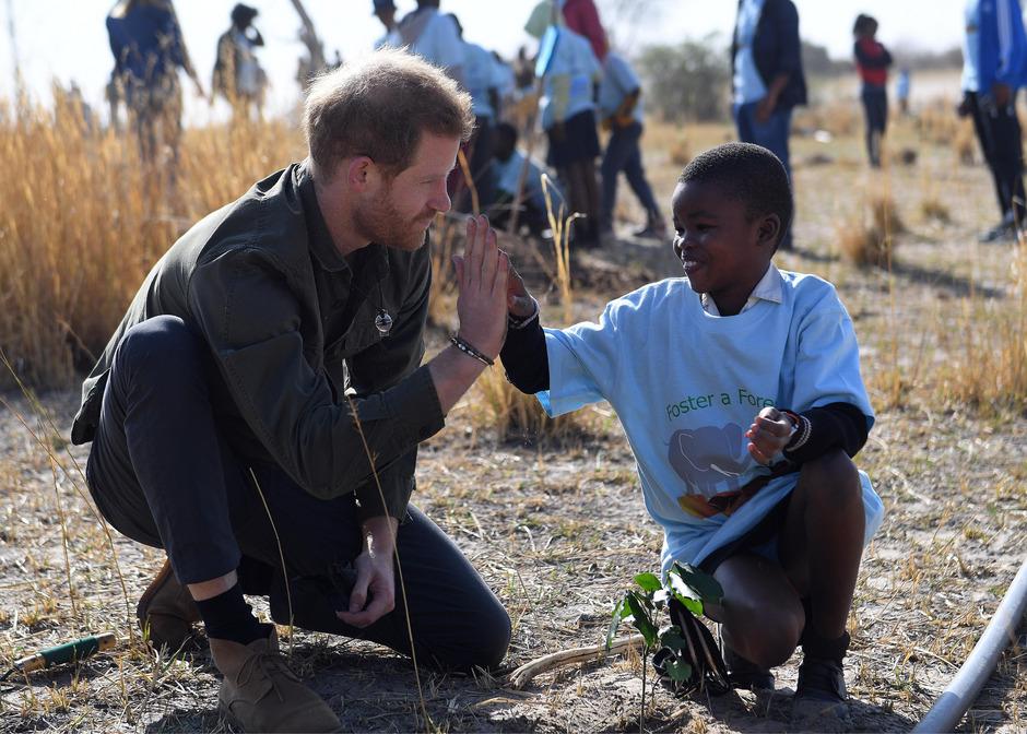 Naturschutz-Agenda: Prinz Harry pflanzte gemeinsam mit 200 Schülern Bäume im Chobe-Nationalpark im Norden des Landes.
