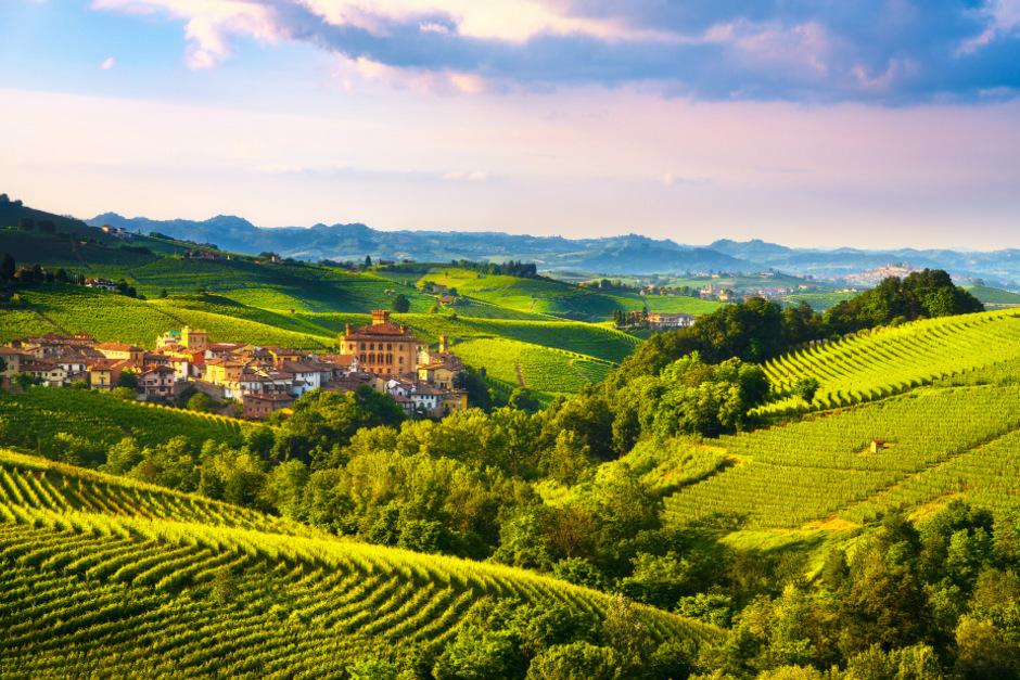 Barolo liegt inmitten der Weinberge.