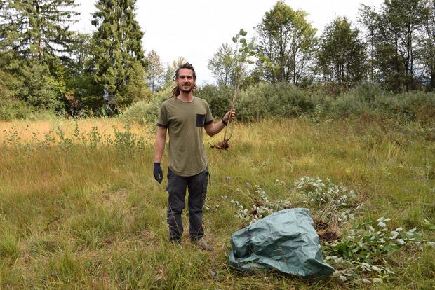 Schutzgebietsbetreuer Philipp Larch entfernt Wüchslinge der Grauerle – diese würden das Moor zu schnell überwuchern.