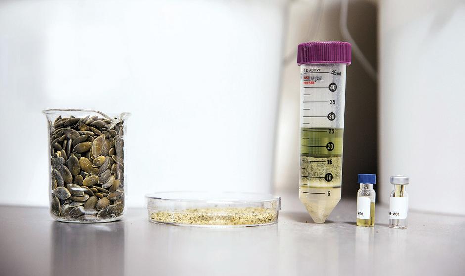 Die Kürbiskerne werden in mehreren Schritten zur Lebensmittelprobe reduziert, die auf 650 Wirkstoffe untersucht wird.