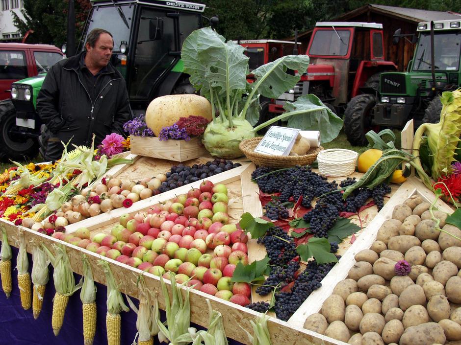 Feldfrüchte aus dem Bezirk Landeck werden am Sonntag, 6. Oktober, beim Bezirkserntedankfest in Pfunds präsentiert.