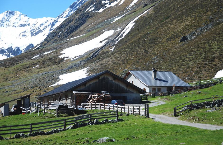 Im Platzertal bei Pfunds liegt Österreichs höchstgelegene Senneralm (2186 m). Weil heuer keine Milchkühe aufgetrieben wurden, gab es auch keine Käseproduktion. Die Zukunft ist aus heutiger Sicht unklar.