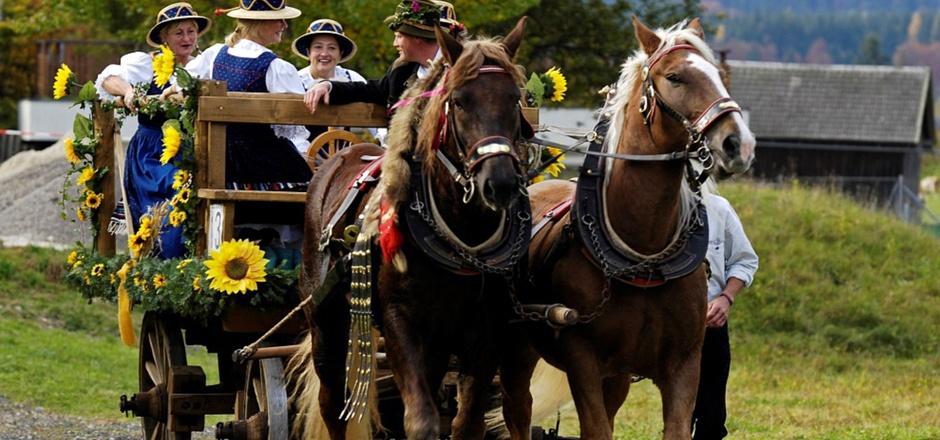 Viele Gespanne und Reiter mit ihren Pferden werden wieder in Thiersee erwartet.