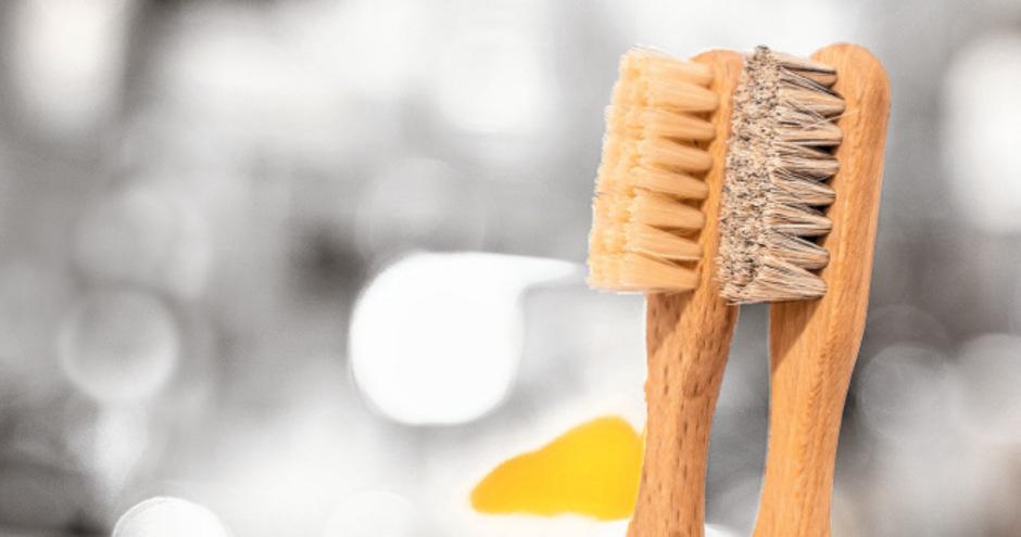 Zahnbürste aus Holz mit Naturborsten: (v.li.) Kinderzahnbürste mit Schweinehaaren, Holzzahnbürste mit Schweinehaaren, Holzzahnbürste mit Dachshaaren.