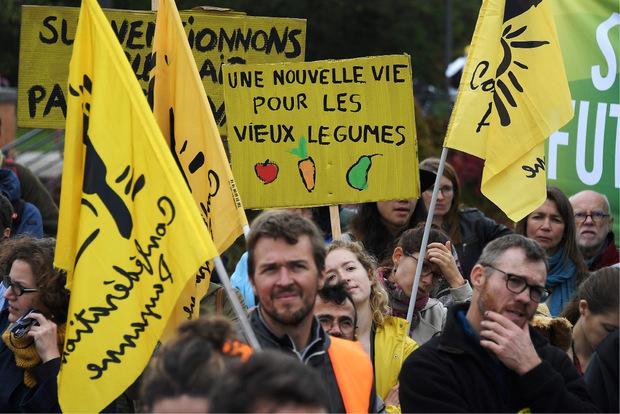 """""""Ein neues Leben für altes Gemüse"""" fordert diese Demonstrantin."""
