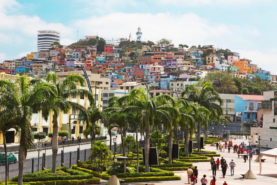Mit Hut, so wie Johnny Depp: Eine Reise durch Equador - Tiroler Tageszeitung Online
