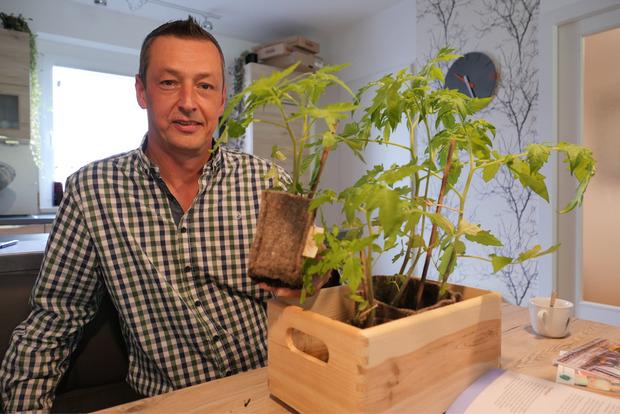Thomas Schrotter mit jungen Tomatenpflanzen.