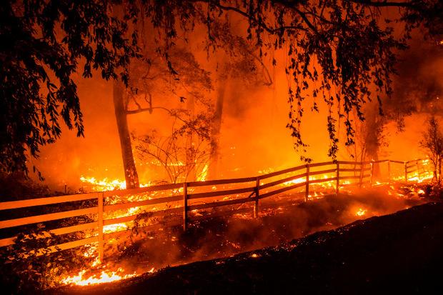 Die Flammen wüten dort seit vergangenem Mittwoch und breiteten sich nach Behördenangaben auf einer Fläche von mehr als 300 Quadratkilometern aus.