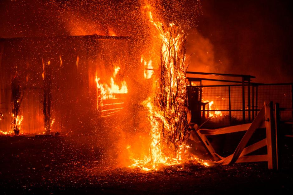 """Bei der Bekämpfung des sogenannten """"Kincade""""-Feuers im Weinbaugebiet Sonoma County nördlich von San Francisco, waren unterdessen gut 4000 Feuerwehrleute im Einsatz."""