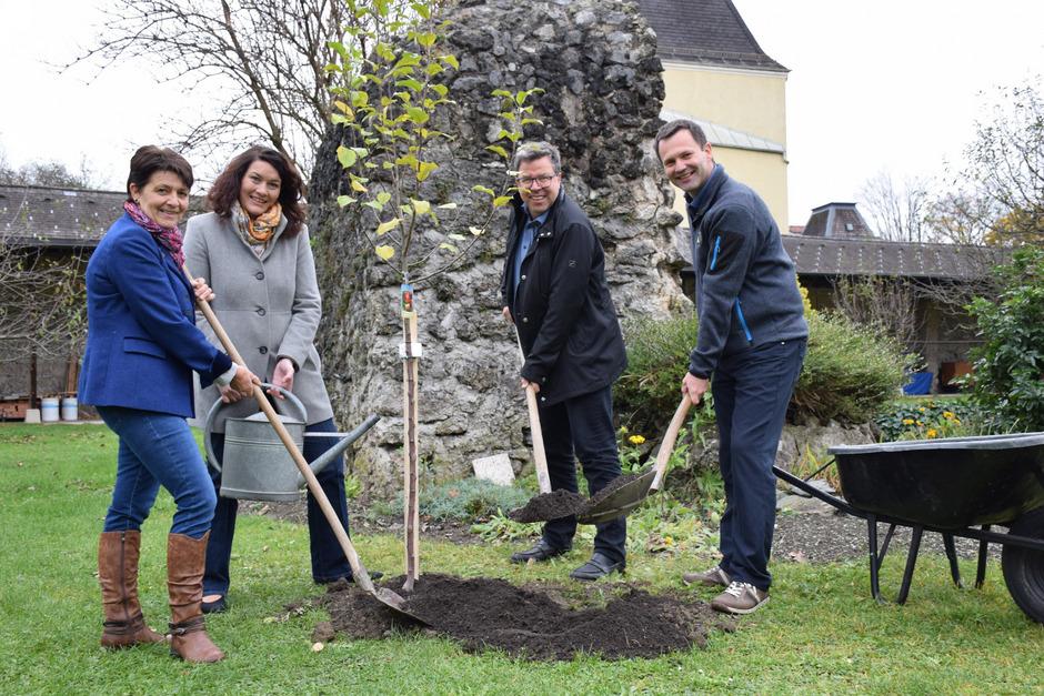 Helga Brunschmid, Ingrid Felipe, Clemens Enthofer und Gregor Semmelhofer pflanzten einen Kronprinz-Rudolf-Apfelbaum.