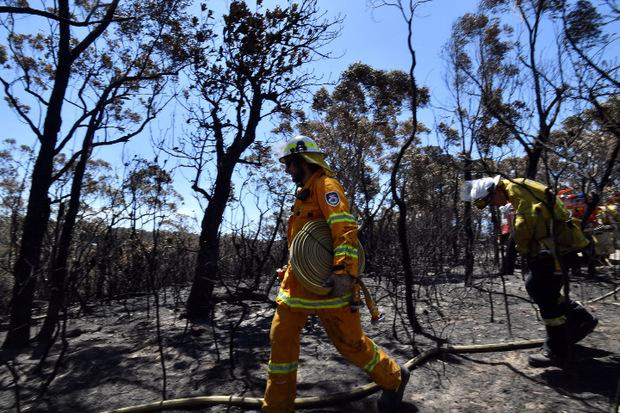 Hunderte Feuerwehrleute kämpfen im ganzen Land gegen die Flammen.