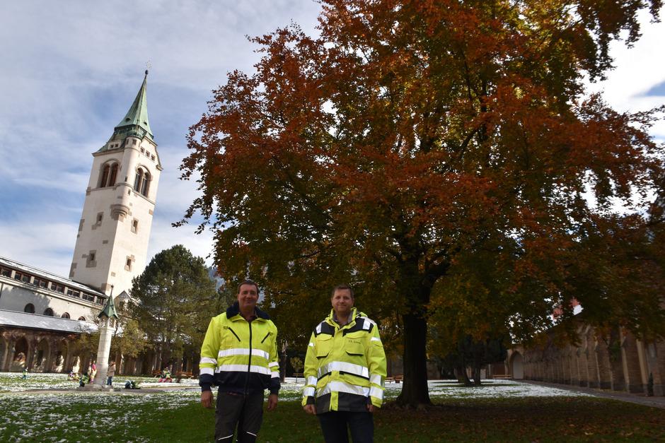 Die Stadtgärtner Markus Krieg (l.) und Christian Lintner bemühen sich um jeden Baum im Schwazer Stadtgebiet.
