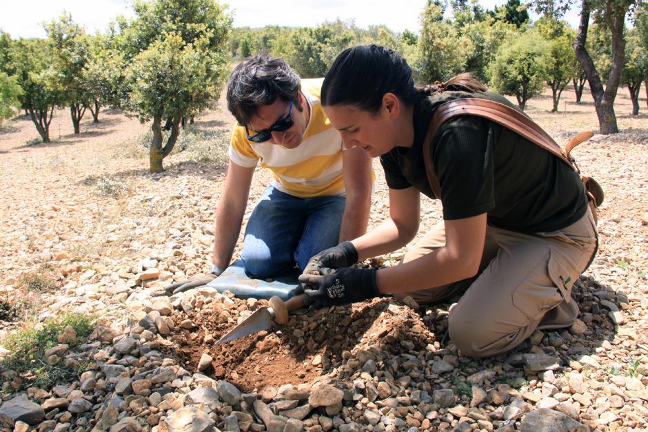 1 Touristen dürfen Trüffel selbst ausgraben.