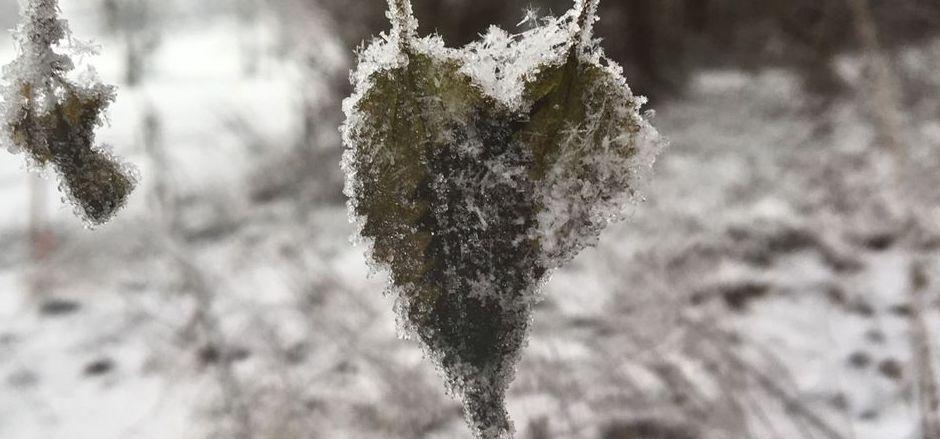 Schnee-Herz in Wörgl.